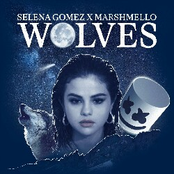 Wolves (Selena Gomez x Marshm ello) Mp3 Song