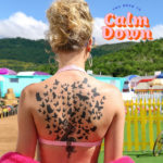 You Need To Calm Down Taylor Swift Mp3 Song