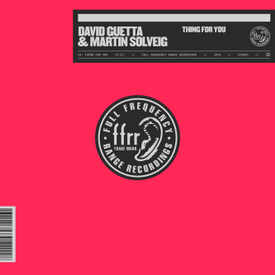 Thing For You (David Guetta & Martin Solveig)